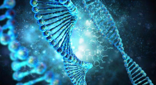 Как устроена ДНК? Как работают лекарства? Занятия для детей в Твери