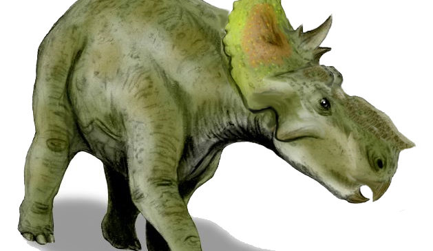 Станислав Дробышевский: «В Твери могли жить пахиринозавры»