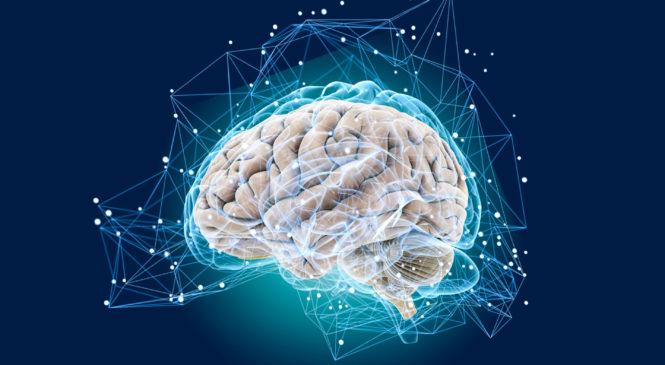 Можно ли ускорить мышление и улучшить память?