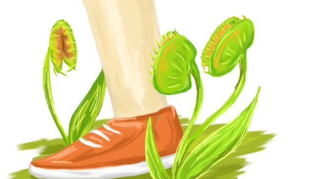 Может ли растение съесть человека?