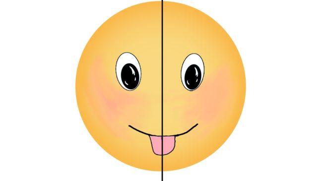 Почему на лице всего по два, а язык один?