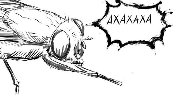 Почему мухи потирают лапки?